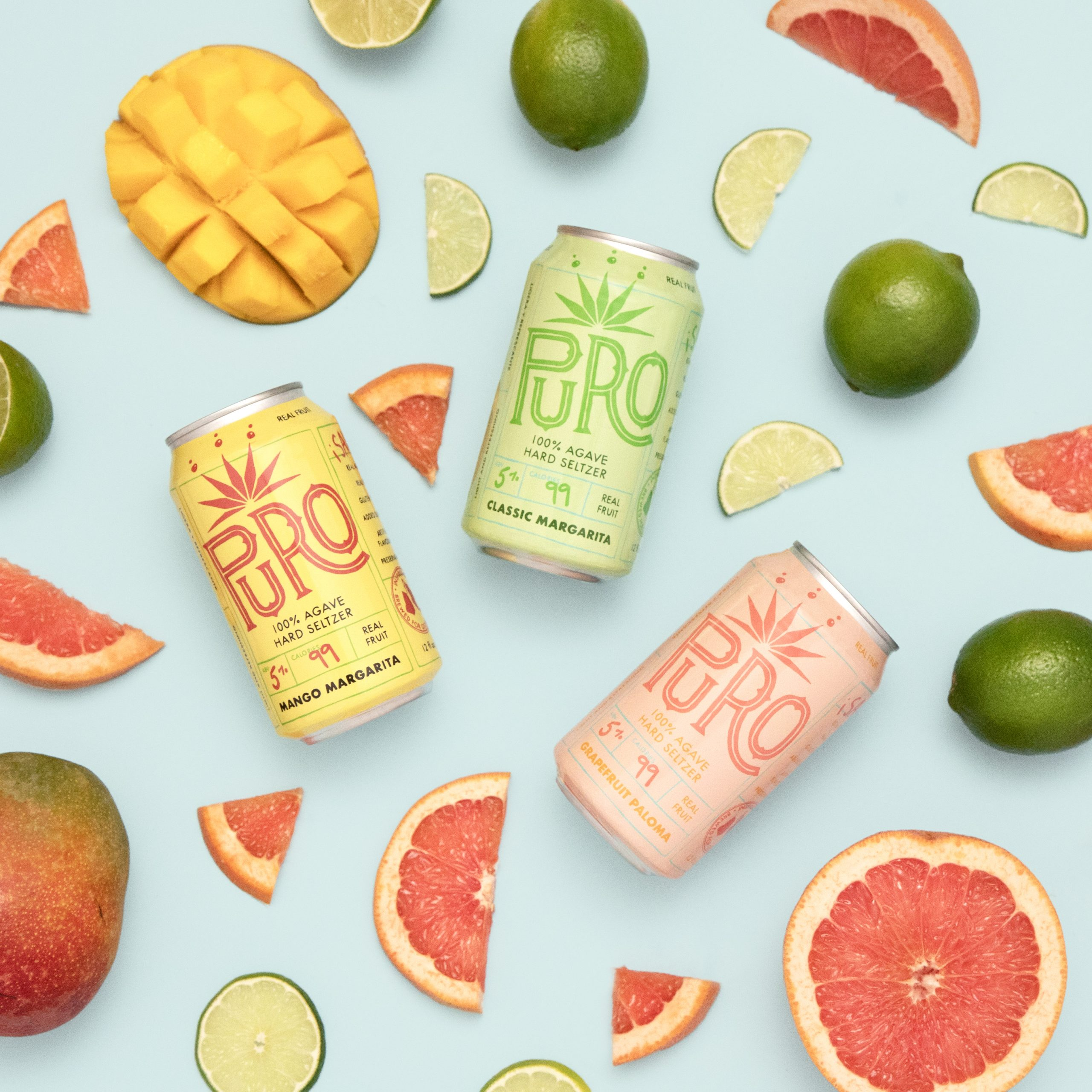 Dry County Brewing Puro Agave Seltzer